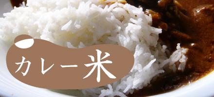 レンジで5分本格カレー米